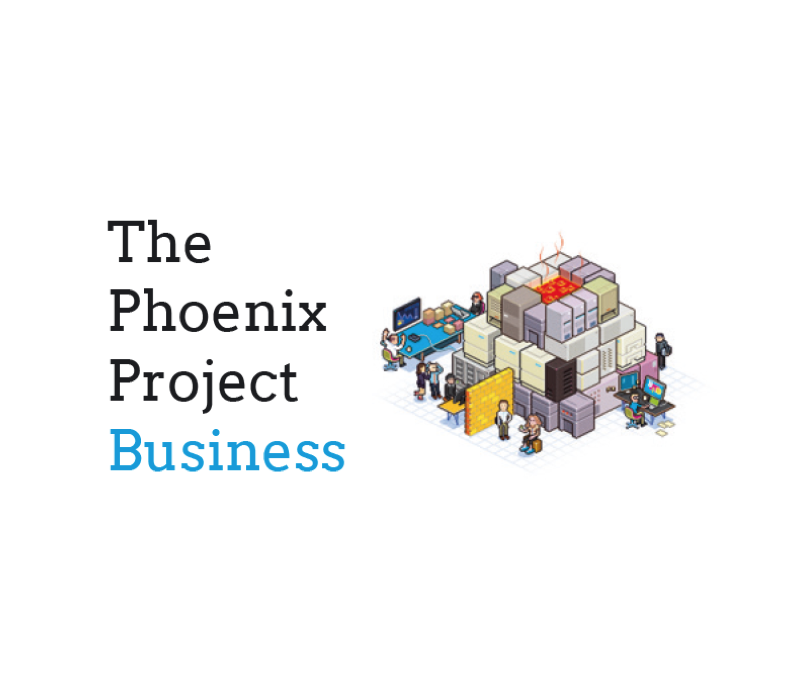 The Phoenix Project for business